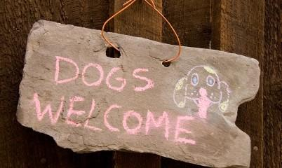 dogs-welcome-sign_1-402x240
